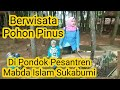 - Wisata pohon Pinus d pesantren yatim mabda islam Nyalindung Sukabumi