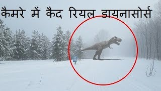 """Real dinosaurs caught in camera , this video about . there are fives videos ..-~-~~-~~~-~~-~-please watch: """"real horror story ..."""