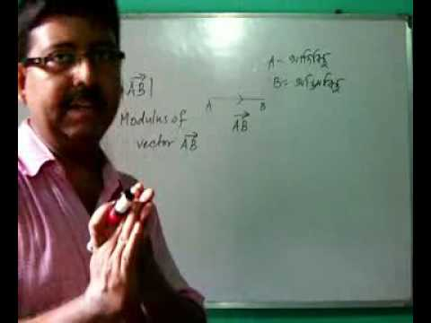PHYSICS CLASS XI IN BENGALI: Introduction To Vector
