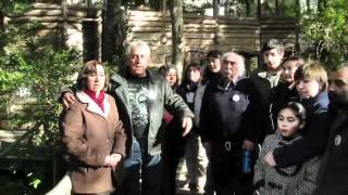 Cantares del Bosque, Grupo Folckórico de Neltume