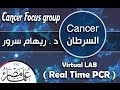 Virtual LAB | Real Time PCR