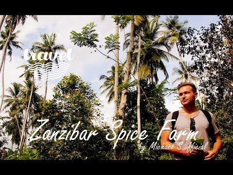 ZANZIBAR - Spice Farm & Jozani Forest / 🌴 Travel Vlog 🌴