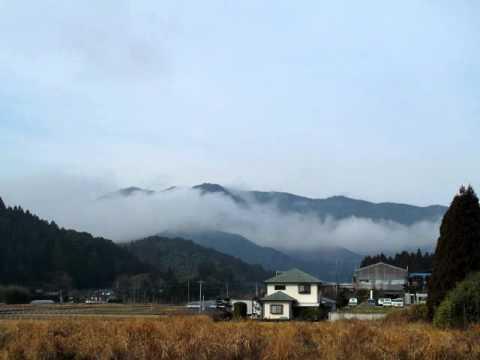 春の朝の霧mov