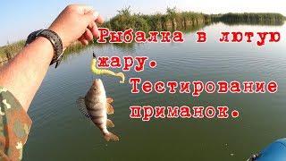 Рыбалка в лютую жару  Тестирование новых приманок