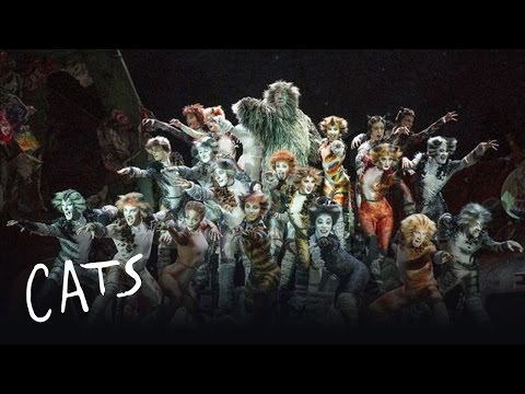 Cats Heads To Adelaide! - Australia | Cats the Musical