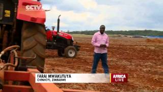 Chinese, Zimbabwean joint venture paves way for improved farming