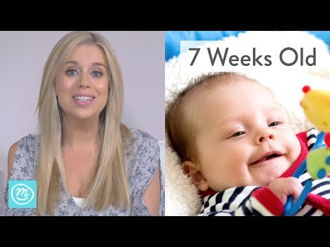 7 Weeks Old: What to Expect - Channel Mum