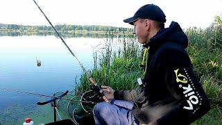 Ловля на ФИДЕР в сентябре 2020! Фидерная Рыбалка!