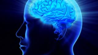 brain power - Improve memory and concentration -- meditation music & relaxing music ambient