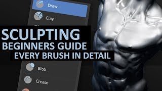 Sculpting in Blender 2.8 | Beginners Detailed Guide | Every Brush