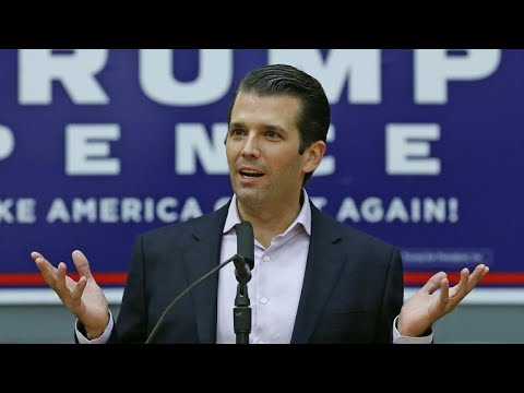 Thumbnail: Why did Trump Jr. release emails about meeting with Russian lawyer?