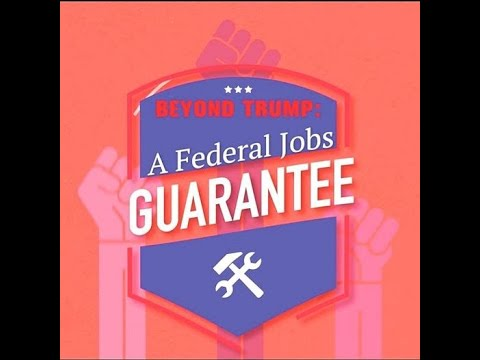 Seeing the Bigger Picture: A Federal Job Guarantee