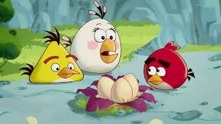Энгри Бердс 1 сезон все серии подряд   Злые птички   Angry birds Toons