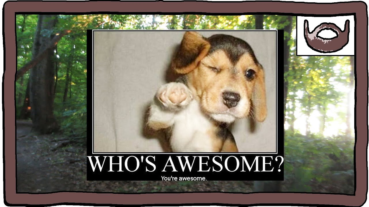 Who's Awesome? You're Awesome! - YouTube