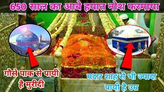 708 Saal Ki Umar Payi | Khalifa e Gause Azam Shaikh Munawwar Ali Shah Allahabadi | Allahabad UP