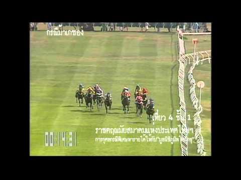 ม้าแข่งเกซองเที่ยว4 ชั้น1 สนามไทย580208