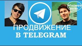 Как раскрутить канал в TELEGRAM. Мой опыт по Продвижению