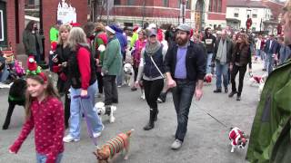 Golden Retrievers attend Mt. Adams Reindog Parade 2012 - Cincinnati