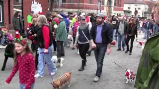 Golden Retrievers attend Mt. Adams Reindog Parade 2012 - Cincinnati