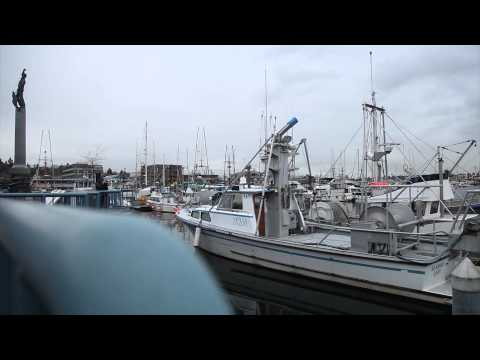 Seattle Maritime Industry: Safe at Sea