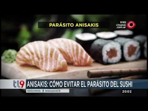 parásitos de sushi de salmón