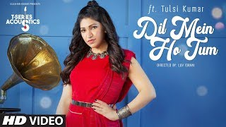 Dil Mein Ho Tum | T-Series Acoustics | TULSI KUMAR  | WHY CHEAT INDIA  | Bollywood Songs