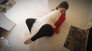 CHERRY gave me DHOBI PACHHAAD | Ss Vlogs :-)