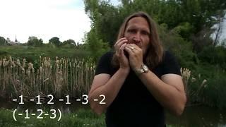 Губная гармошка С, блюзовый ритм #3, табы
