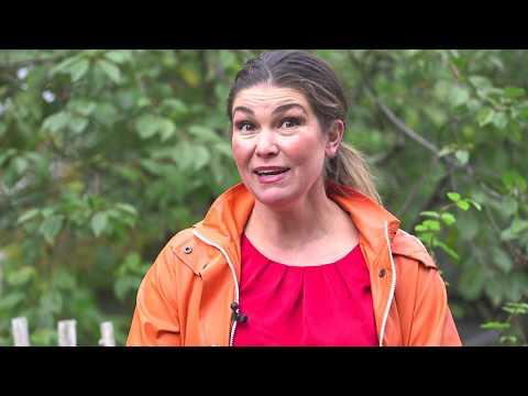 Jessica Lyon Min trädgård -Allas trädgård kretslopp i en villaträdgård