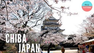 How To Enjoy A Day In Chiba Japan!