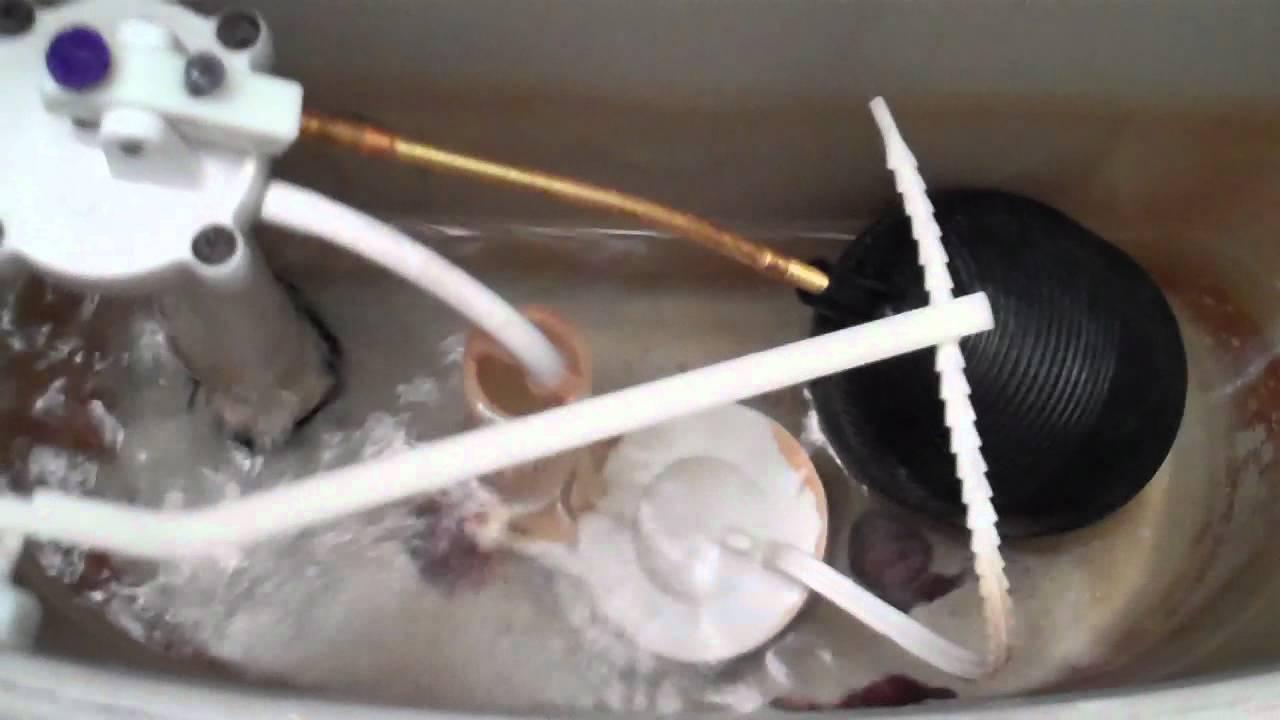 2555 2006 Briggs Altima Toilet Tank 2 Youtube