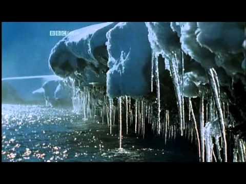 BBC.The.Natural.World.Symphony.2005