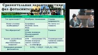 Обеспечение качества образовательного процесса на основе использования инновационных форм обучения