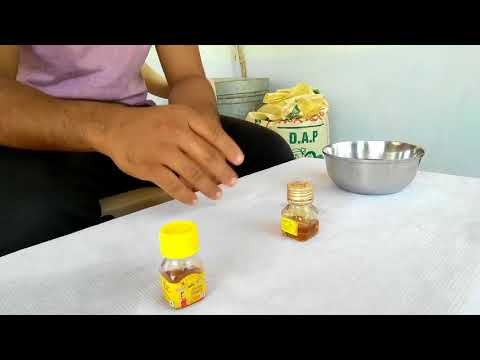 How to check if Honey is Pure or Not?(Honey Quality Test)
