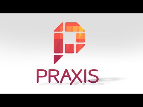 Praxis - Apprentice at a Startup