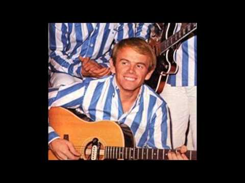 Al Jardine of the Beach Boys - Interview
