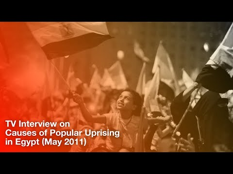 TV Interview on Causes of Popular Uprising in Egypt (5/11)