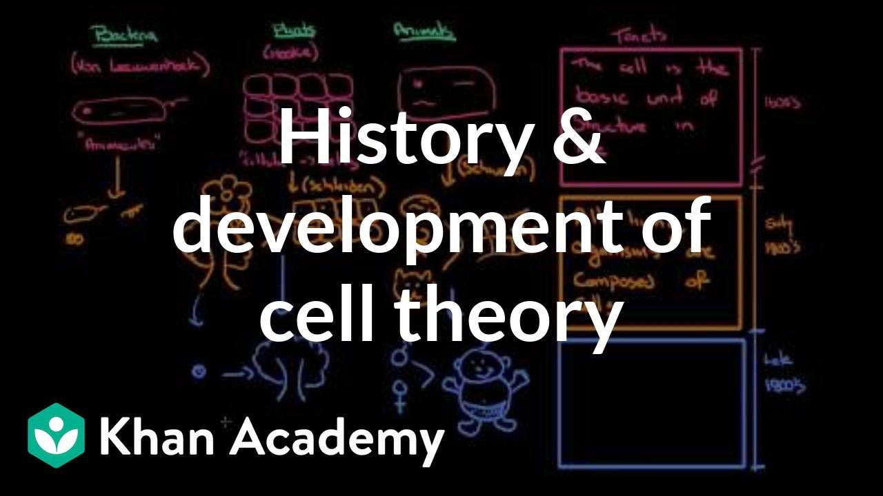 History and development of cell theory (video) | Khan Academy