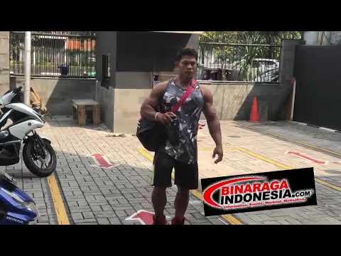 Distributor Alat Fitness Import Impulse Indonesia Call  0812 9393 9384