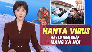 Hanta virus ở Trung Quốc gây lo ngại khắp Mạng Xã Hội