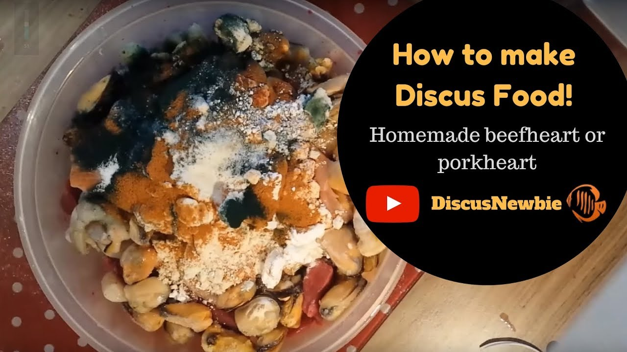 How to make discus fish food beefheart porkheart mix for Discus fish food
