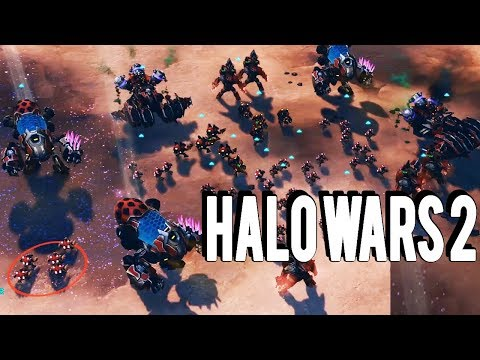 New Leader! YAP YAP THE DESTROYER! GOD OF THE GRUNTS - HALO WARS 2
