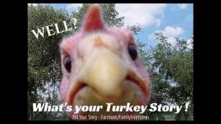 Family Tree Videos Promo 8 13