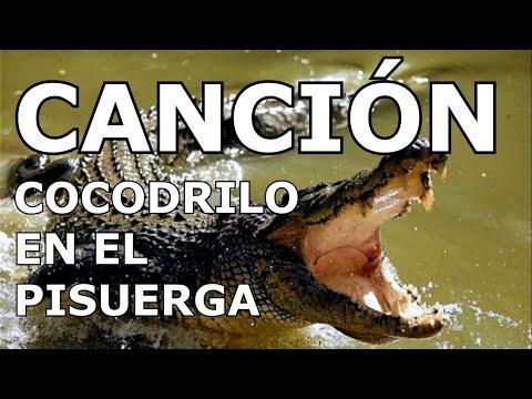 CANCIÓN COCODRILO EN EL PISUERGA
