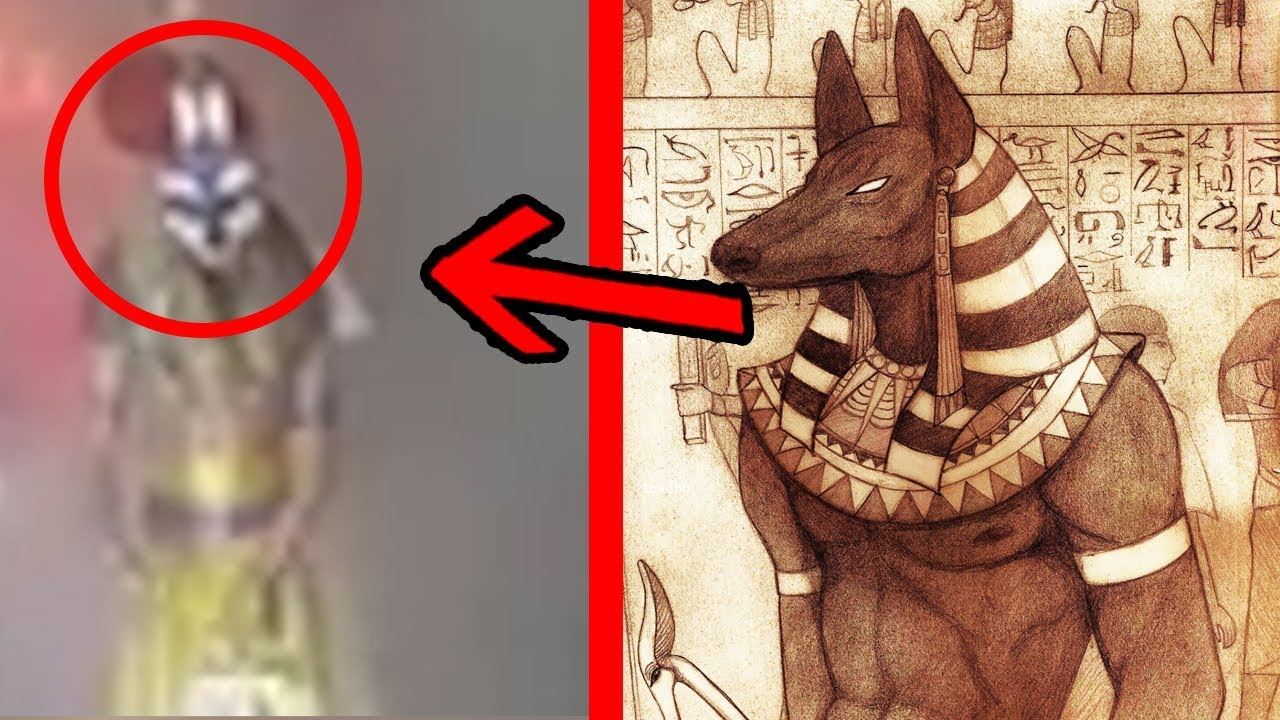 5 Dioses Egipcios Captados En Cámara En La Vida Real