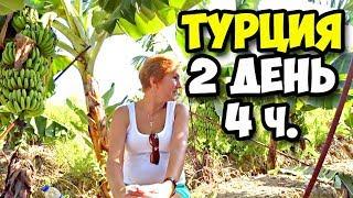 Турция    2 день 4 часть    Дошли пешком до Таврический гор в Махмутларе    Отдых в банановой роще
