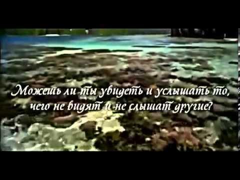 ХуЯндекс - Юмор, Порно, Эротика, Фото/Видео Приколы