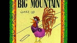 big mountain peaceful revolution 1992