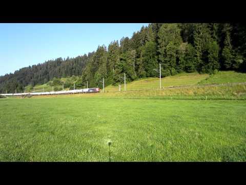 Circus Knie in Switzerland