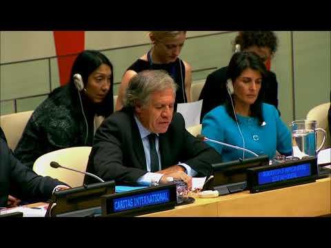 THE UN SECURITY COUNCIL AND THE ARRIA FORMULA 2017 FULL MEETING